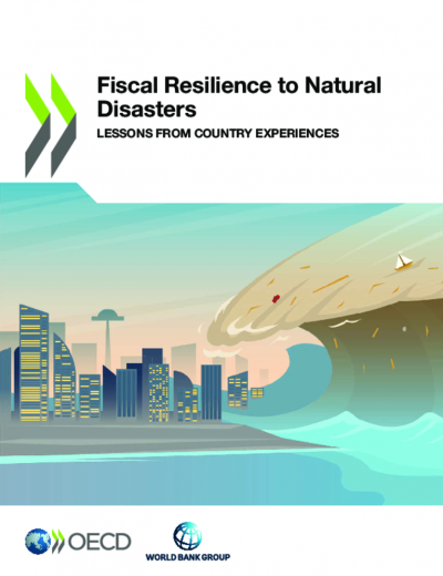 Fiscal Resilience to Natural Disasters
