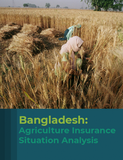 Bangladesh: Agriculture Insurance Situation Analysis