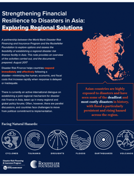 Strengthening Financial Resilience to Disasters in Asia: Exploring Regional Solutions (Brief)