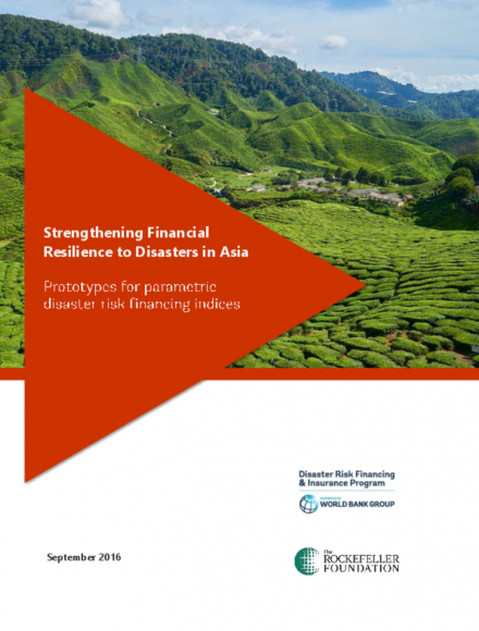 Prototypes for Parametric Disaster Risk Financing Indices